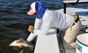 Capt. Jesse releasing a Mosquito Lagoon Redfish.